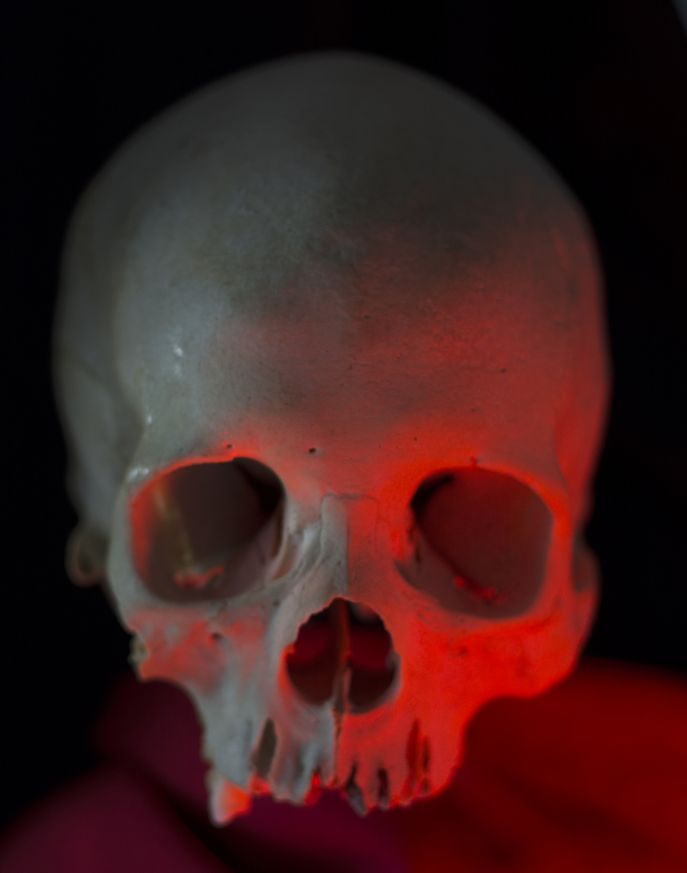5 Weird Facts About The Human Skull And 5 High Res Images
