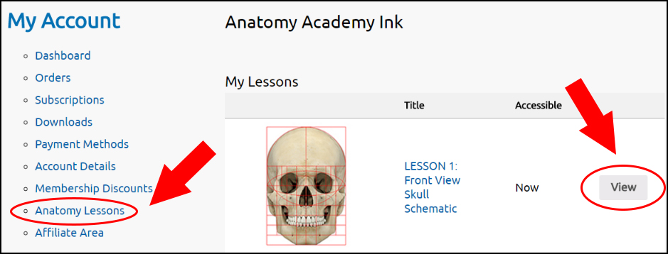 anatomy-lesson-access