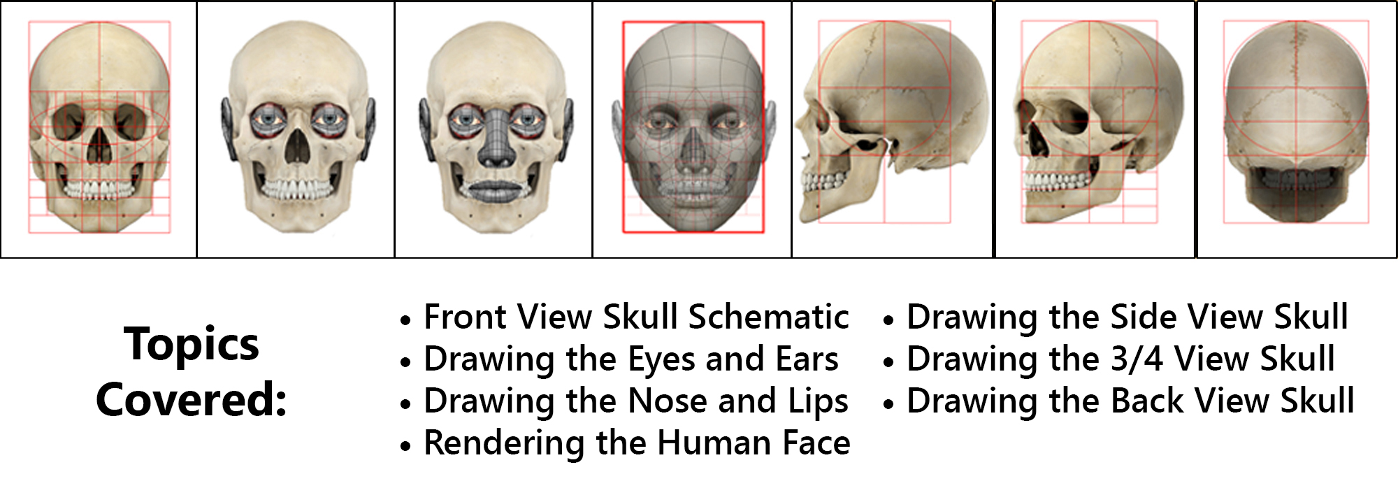 drawing-the-human-head-topics-covered